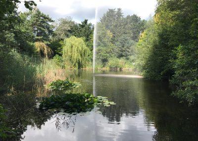 vijver met fontein